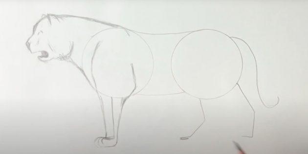 Как нарисовать тигра: Наметьте переднюю левую лапу
