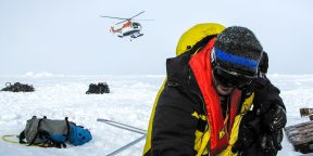 Преступность в Антарктиде: как нарушают закон на самом незаселённом континенте Земли