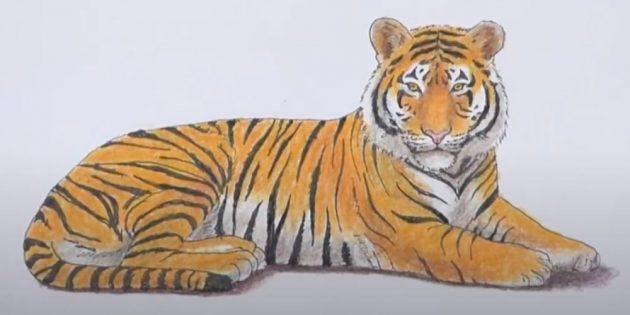 Лежащий реалистичный тигр
