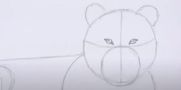 Как нарисовать тигра: Нарисуйте глаза