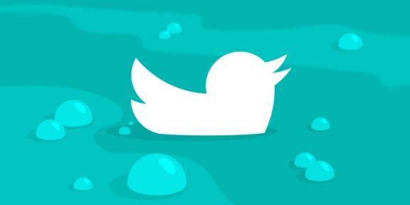 «Мы никуда не торопимся»: как в Сети отреагировали на замедление Twitter