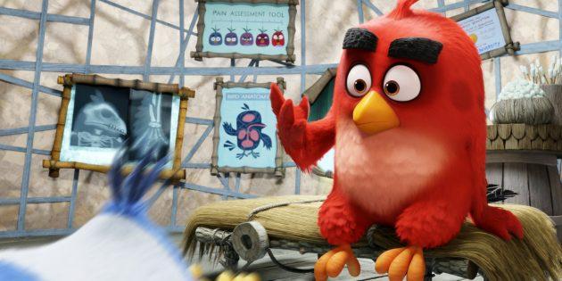 Мультфильмы про птиц: «Angry Birds в кино»