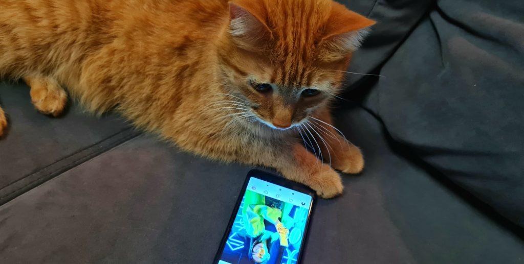 Мобильный интернет «МегаФон»: Копейск