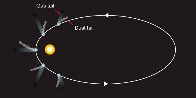 Газовый и пылевой хвосты, расходящиеся в разных направлениях