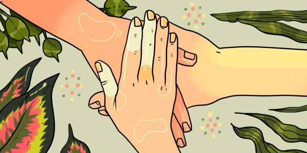 Долгая и крепкая дружба: история трёх девушек