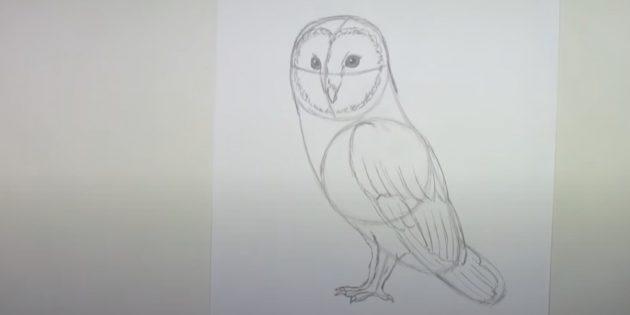 Как нарисовать сову: нарисуйте вторую лапу и наметьте крыло