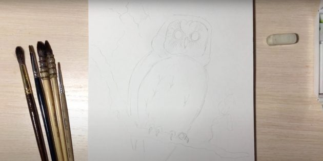 Как нарисовать сову: изобразите когти, глаза и ответвление
