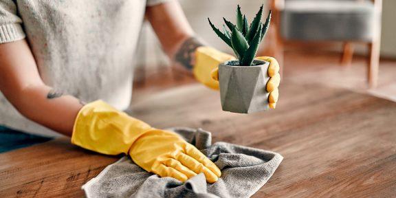 Что делать, чтобы реже вытирать пыль дома