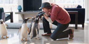 6 очаровательных и один очень мрачный фильм про пингвинов