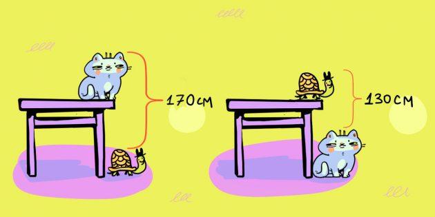 Задача про кота, стол и черепаху