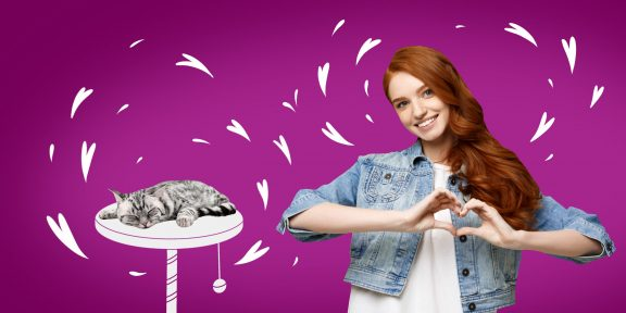 Как понять, что котик счастлив, и почему вам важно об этом знать