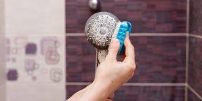 Как почистить душевую лейку: 6 простых способов
