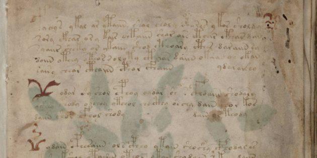Загадки истории: манускрипт Войнича