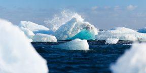В National Geographic признали существование пятого океана