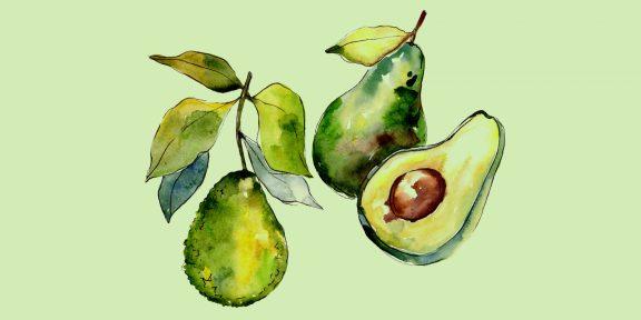 Как нарисовать авокадо: 26 классных вариантов