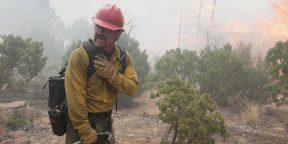 Горящие леса и небоскрёбы: эти фильмы про пожарных и пожары трогают до глубины души