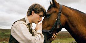 10 фантастически красивых фильмов про лошадей