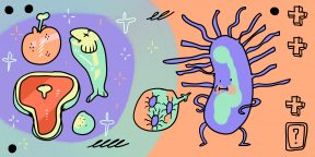 Как распознать сальмонеллёз и чем его лечить