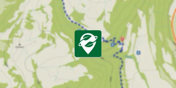 Создатели Maps.me запустили новые офлайн-карты OrganicMaps