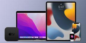 Apple выпустила публичные бета-версии iOS 15, iPadOS 15, watchOS8 и macOS Monterey