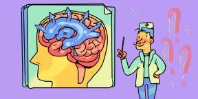 Откуда берётся гидроцефалия и как её лечат