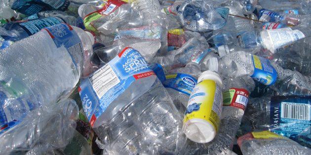 Учёные смогли превратить пластик в протеиновый порошок