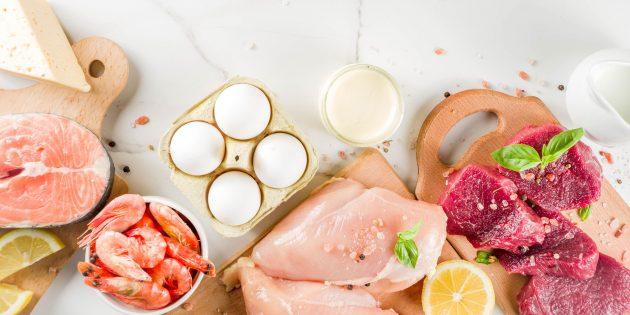 Какой вред наносят белковые диеты