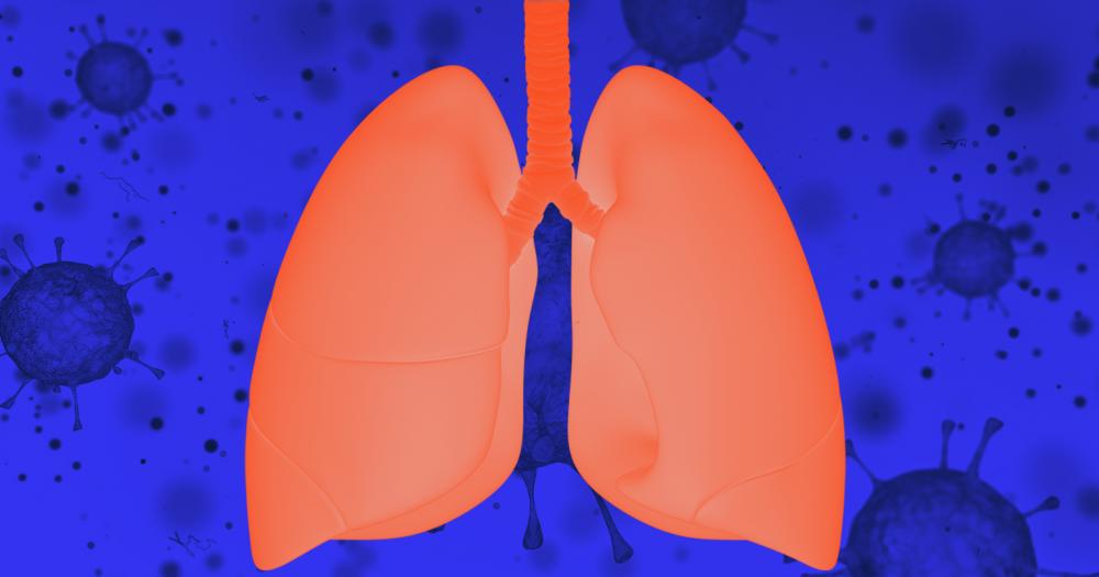 Что такое воспаление легких у взрослых