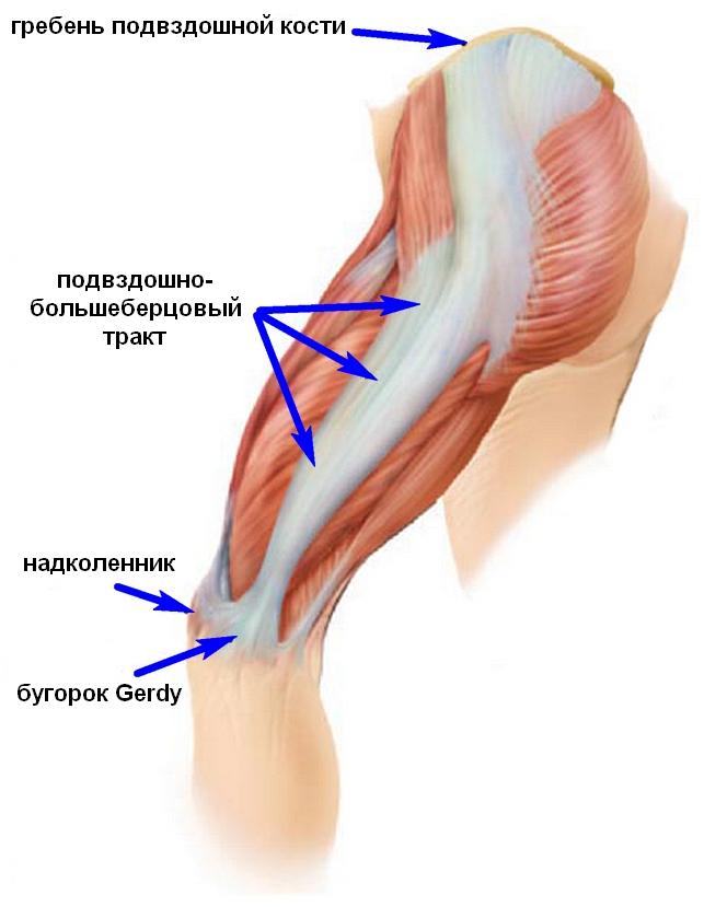 Берцовый сустав распух сустав пальца на ноге что делать